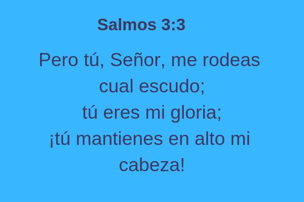 Salmos 3:3