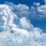 Dios promete premiarte si no desmayas en tu esfuerzo y constancia